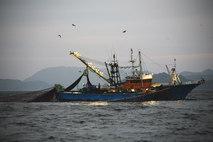 全長40m弱、総トン数80トン網船